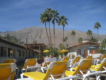 Vote for Palm Springs