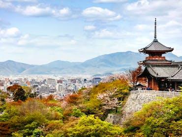 Vote for Kyoto