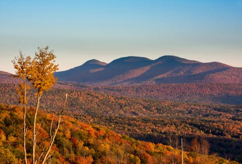 Vote for NYC to Catskills