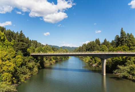 Vote for SF to Guerneville