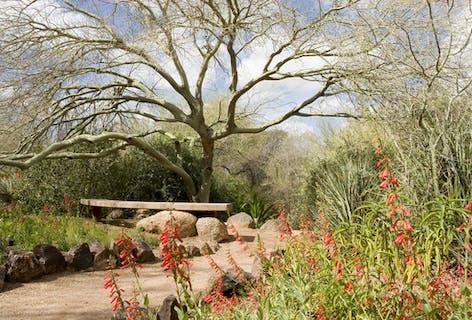 Vote for Botanical Garden